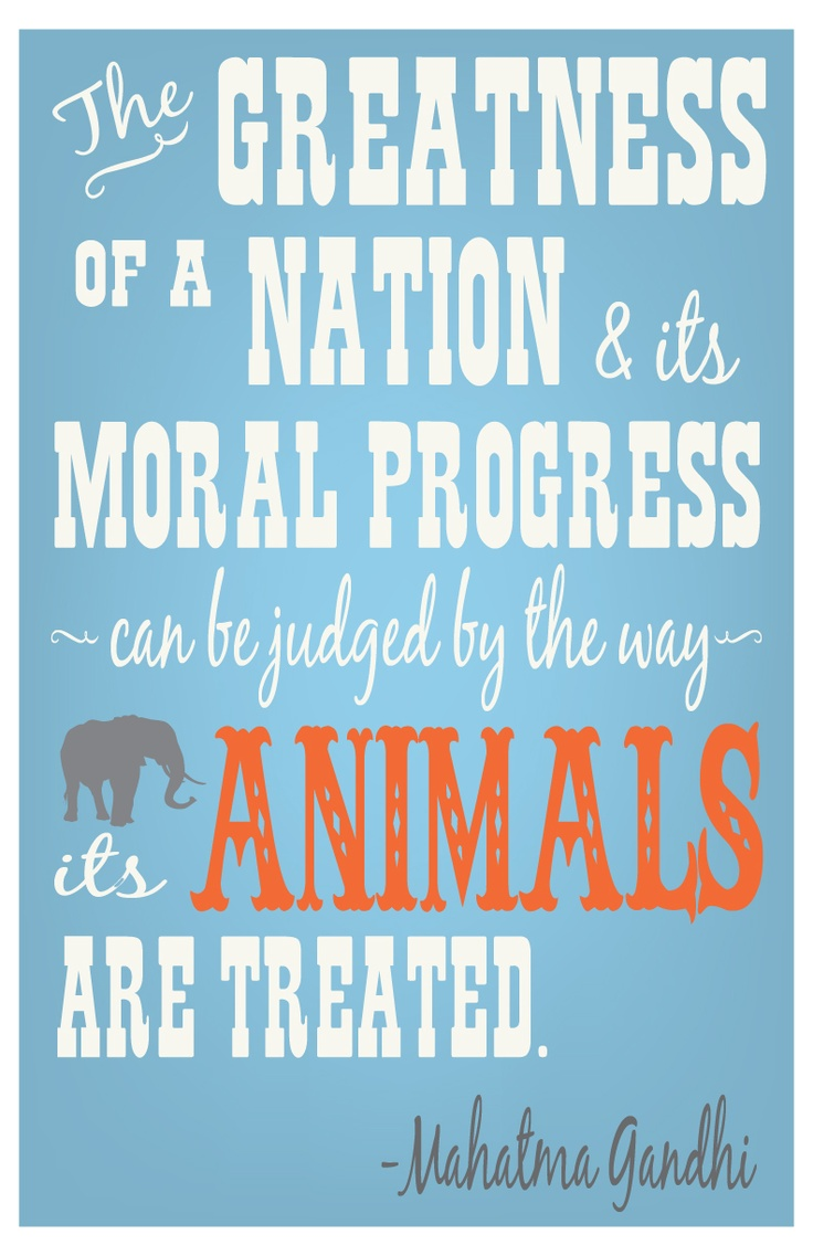 Animal rights quotes gandhi