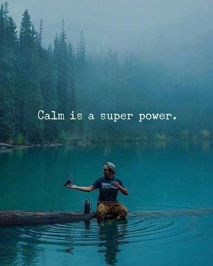 wisdom quotes calm is a superpower quotes omg quotes your