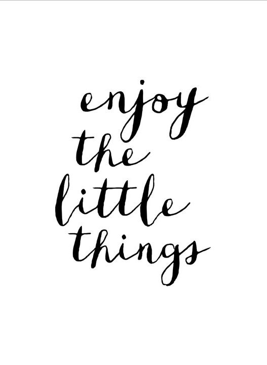 Motivational Quotes : Enjoy the little things…. – OMG Quotes ...
