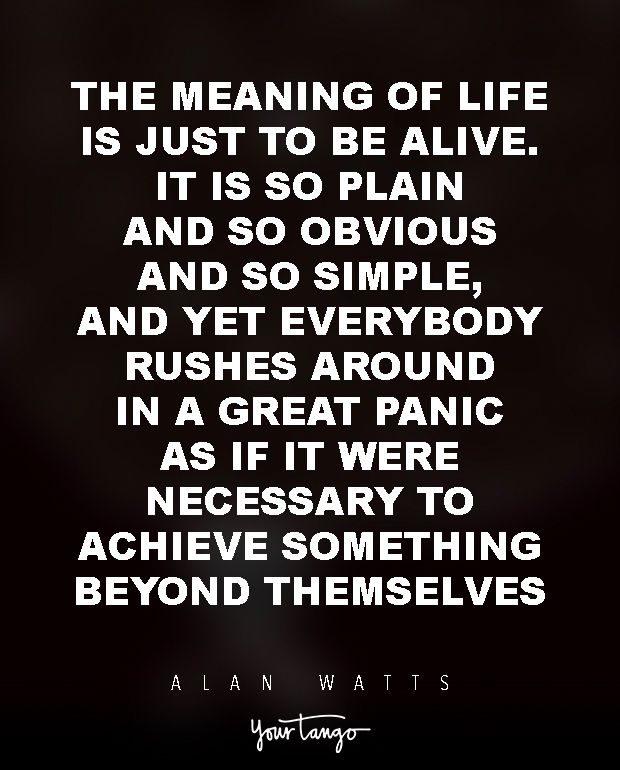 wisdom quotes   15 powerful alan watts quotes will make you rethink your entire life  u0026quot the m
