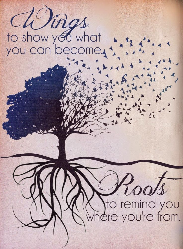 Roots Quotes Simple Wisdom Quotes Wings To Show You What You Can BecomeRoots To