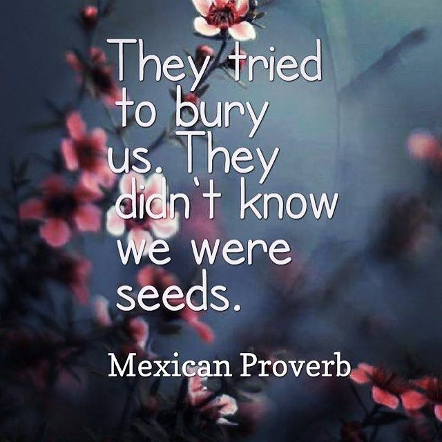 The Power Of Hope Quotes: Inspirational Quotes About Strength: They Tried To Bury Us