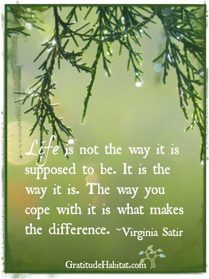 Wisdom Quotes It Is What It Is Visit Us At Wwwgratitudehabi