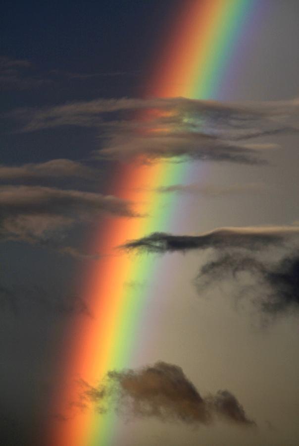 Quotation On Rainbow: Wisdom Quotes : Rainbow Over College Station, Texas