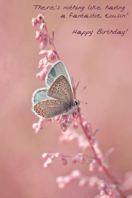 Happy Birthday Quotes best electronic birthday cards to cousin