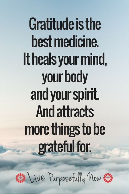 success quotes gratitude omg quotes your daily dose of