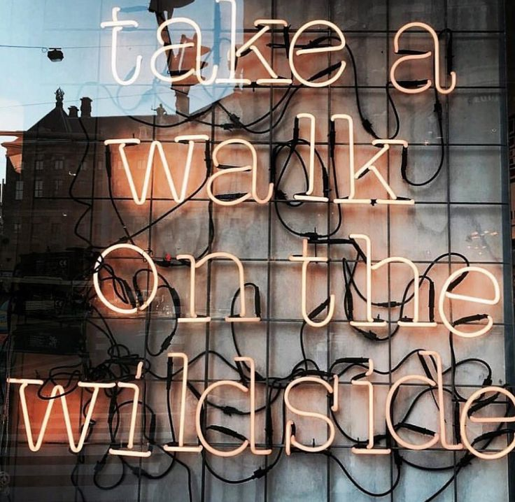 Trust Quotes Take A Walk On The Wild Side Omg Quotes Your