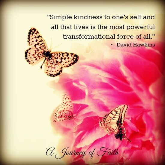 wisdom-quotes-simple-kindness-to-ones-self-and-all-that-lives-is-the-most-powerful-trans.jpg