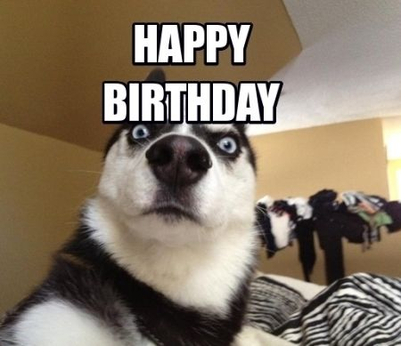 Best Birthday Quotes Happy Birthday Funny Images For Best Friends