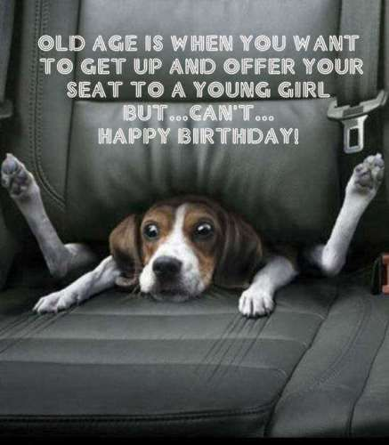 best birthday quotes happy birthday funny old man wishes i