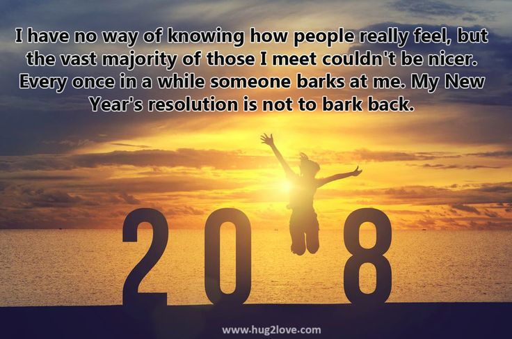 Happy New Year 2018 Wishes Quotes Funny New Years Resolutions