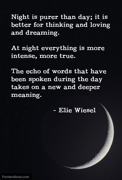 Holocaust Survivor Quotes Prepossessing Inspirational & Positive Life Quotes  Elie Wiesel  Writer