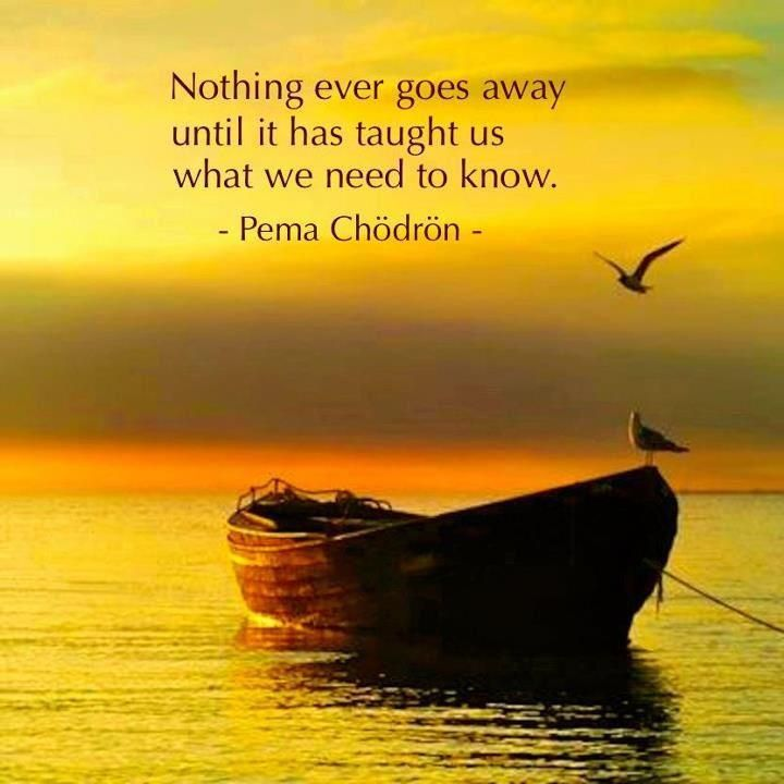 Inspirational Positive Life Quotes Wisdom From Pema Chodron Mesmerizing Pema Chodron Quotes