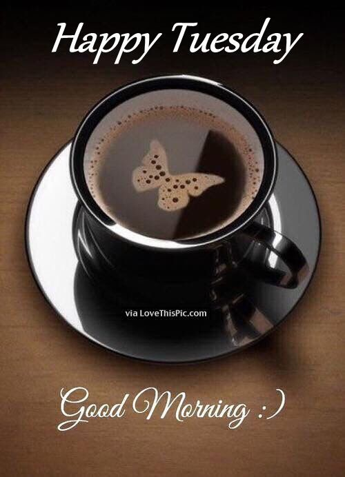 life quotes and words to live by coffee morning nature butterfly