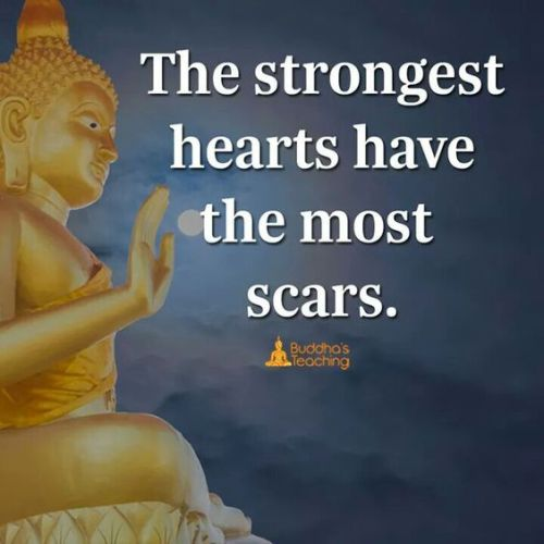 Buddha Quotes On Love New QUOTES ABOUT LOVE Zengardenamaozn Buddha Quotes Professional Zen