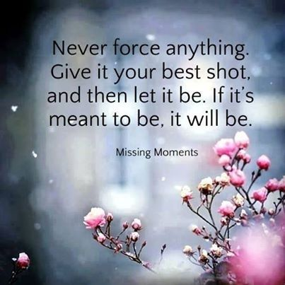 Need To Remembernever Force Anything Life Quotes Quotes Quote Life Cool Wise Quote About Life