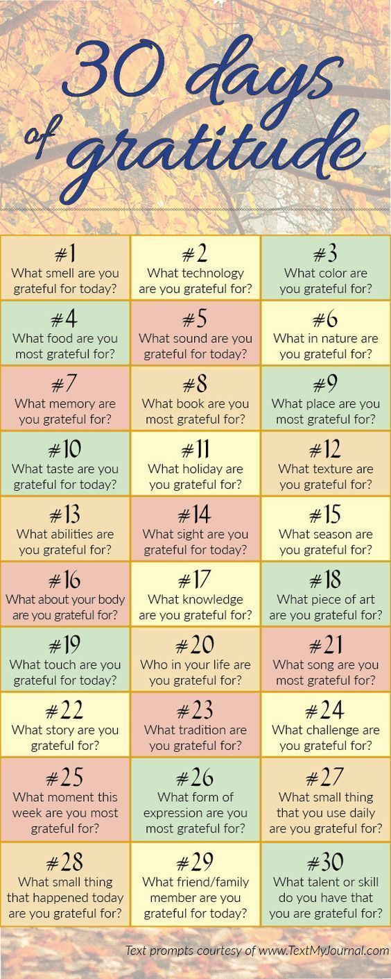 Success Quotes Gratitude Journal Prompts Omg Quotes Your Daily