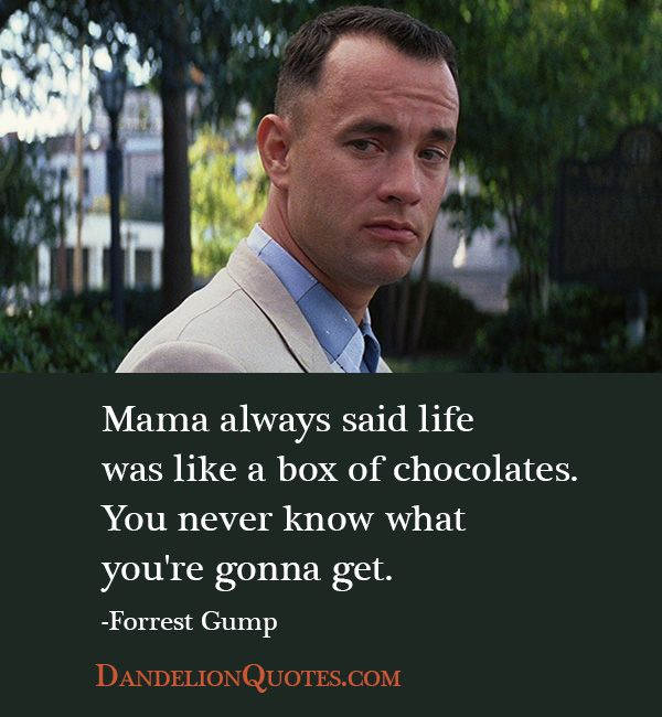 Best Love Movie Quotes: Wisdom Quotes : Love-critters-famous-famous-love-quotes