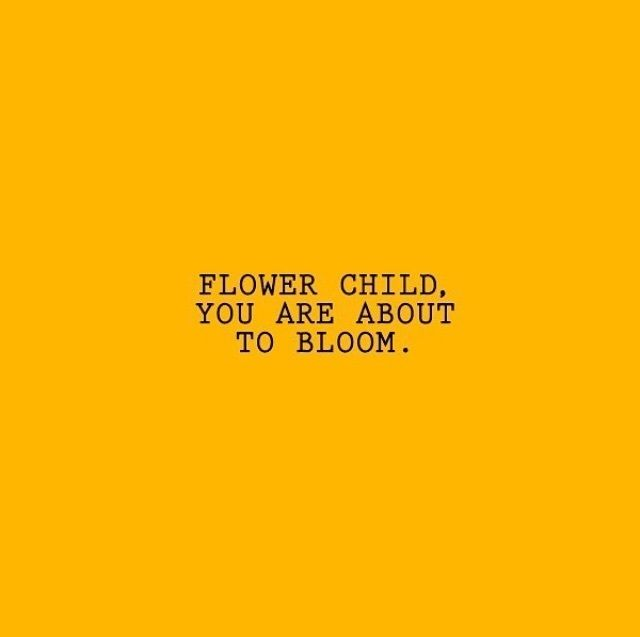 Image of: Words Quotation Image Omg Quotes Success Quotes Yellow Aesthetic Are The Best ᖴoᒪᒪoᗯ