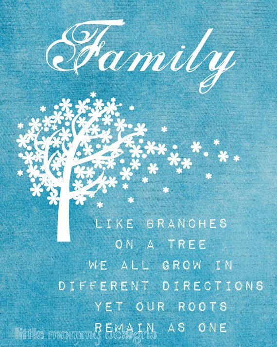 Inspirational Positive Life Quotes Family Branches Family Quote