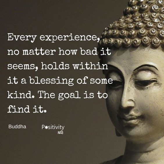 Wisdom Quotes Buddha I Am A Certified Mindfulness And Success