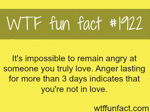 Being Angry On Loved One Wtf Fun Facts Omg Quotes Your Daily