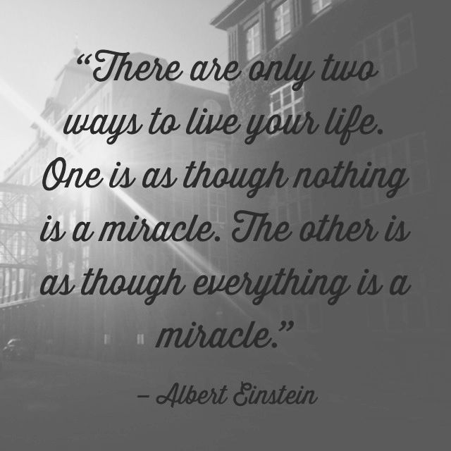 Its Easy To Forget The Miracle Of Life Were Given Omg Quotes