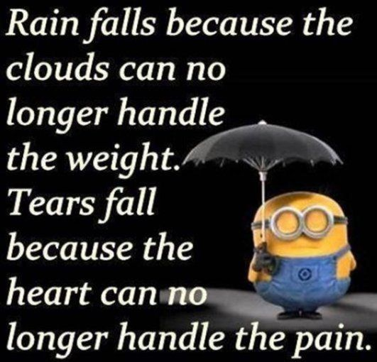 Saying Quotes About Sadness: Life Quotes & Inspiration : 65 Best Funny Minion Quotes