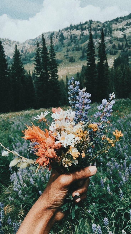 Missing quotes bouquet de fleurs sauvages omg quotes your daily dose of motivation - Bouquet de fleurs sauvages ...