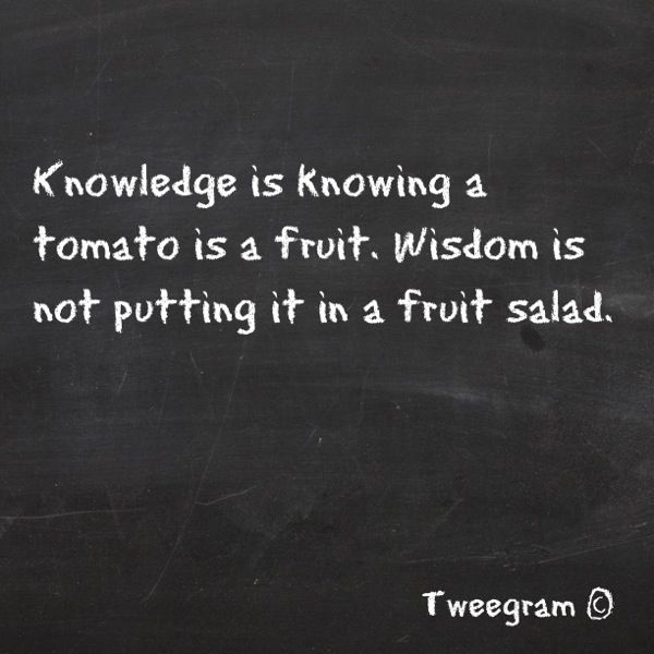 life quotes and words to live by knowledge vs wisdom omg quotes