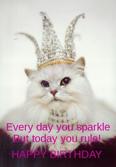 Best Birthday Quotes Birthday Memes For Her Friends Omg Quotes