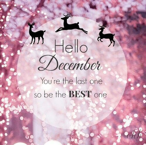 Hello December Holiday Quotes Holiday Greetings Christmas Quotes